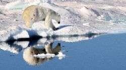 הפלגה לאי וראנגל אי הדובים