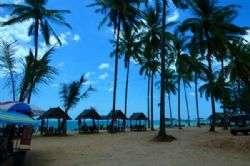 חופים בתוליים בתאילנד
