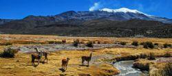בוליביה Bolivia