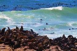 שמורות הטבע של נמיביה
