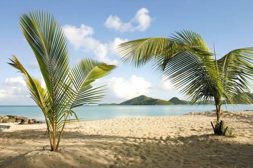 חופי אנטיגואה באיים הקריביים