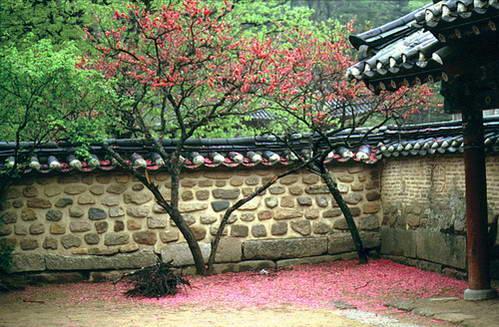 יעדים מרכזיים בקוריאה הדרומית