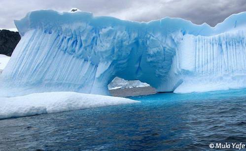 אנטארקטיקה – חלום או מציאות
