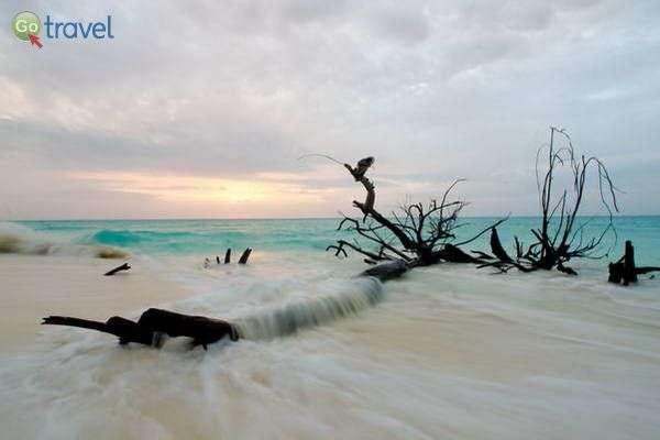 חופים משגעים  (צילום: משה שי)