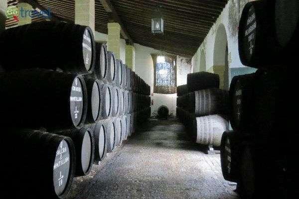 חביות יין ביקב שבחרז דה לה פרונטרה (צילום: כרמית וייס)