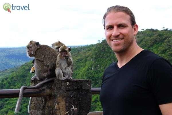 קופים מתוקים ועוד אחד...   (צילום: עמית אופיר)