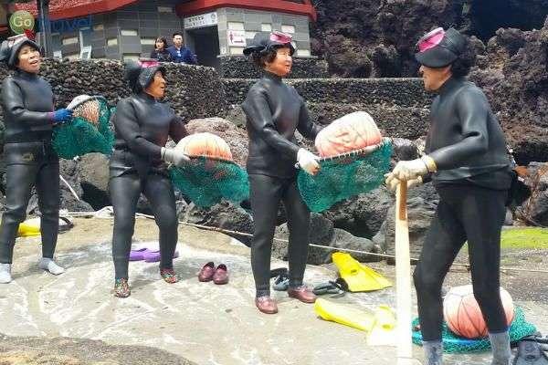 עבודת צוות ומסירות - נשות היניו (צילום: יובל נעמן)