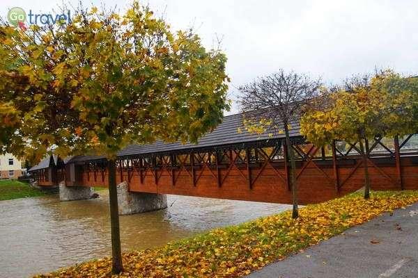 גשר עץ בעיירה דולני קובן  (צילם: כרמית וייס)