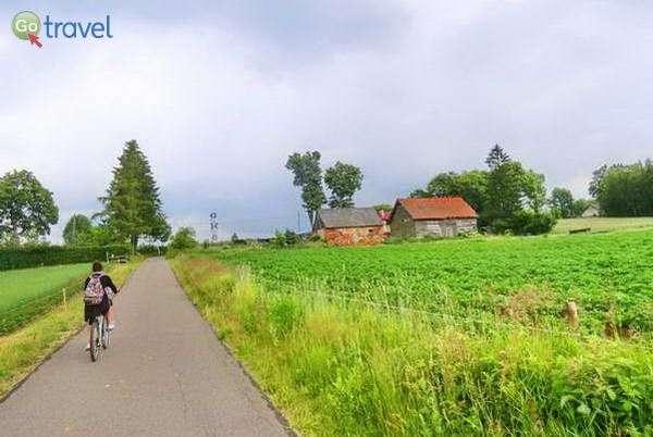 טיול אופניים בנופים הכפריים  (צילום: כרמית וייס)
