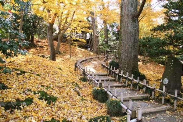 שבילי הליכה נוחים וידידותיים ביפן (צילום: גולן לובנוב)