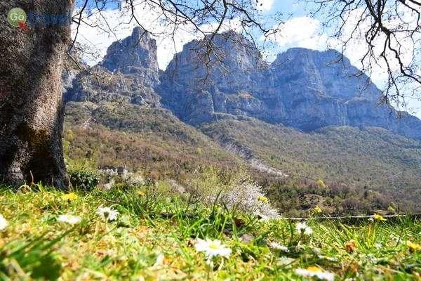 פריחה אביבית בכפר מיקרו פפיגו בחבל זגוריה  (צילום: כרמית וייס)