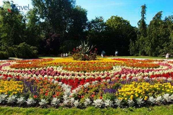 נרגעים בפארק של צ'חוצ'ינק  (צילום: Visit Ciechocinek)