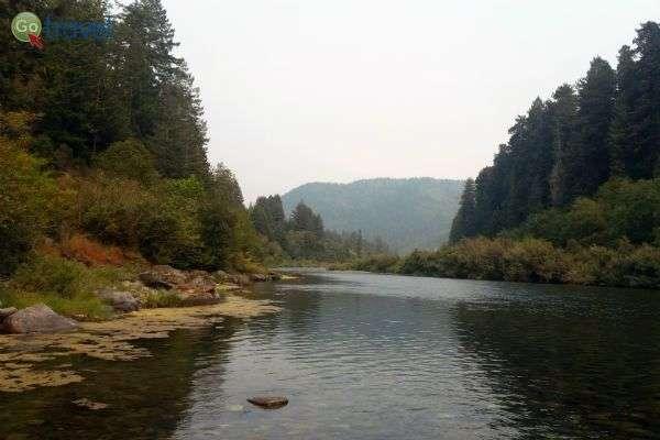 הנהר החוצה את היער (צילום: נטע קלימי)