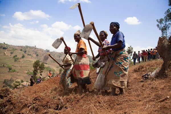 לאחר מלחמת האזרחים זנחו הנשים את התפקידים המסורתיים בחברה השבטית (צילום: World Bank Photo Collection)