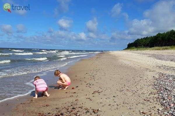 חופי הים הבלטי  (צילום: כרמית וייס)
