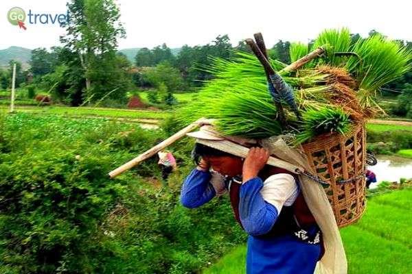 נשים עובדות (צילום: זאביק רילסקי)