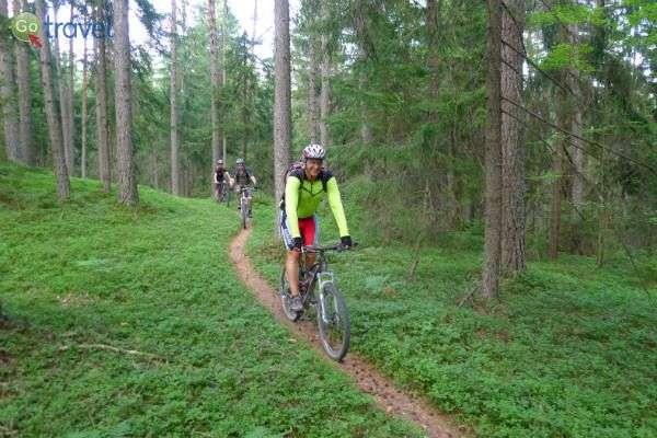 מסלולי רכיבה טובלים בטבע הסלובני (צילום: נעם תדהר)
