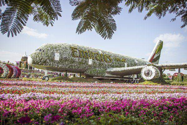התצוגות המרהיבות בגן הקסום של דובאי עשויות ממיליוני פרחים (צילום: Validol1311)