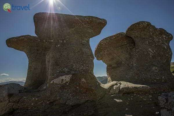 סלע הסבתא  (צילום: דוד פרח)