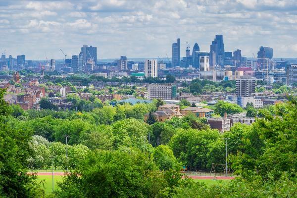 הריאות הירוקות של לונדון הן חלק בלתי נפרד מהנוף העירוני (צילום: Viv Lynch)