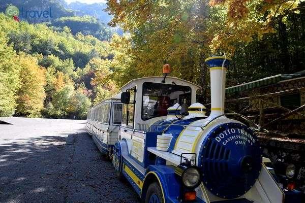 רכבת התיירים הקטנה של שמורת קאמושרה  (צילום: הילה וייס טישלר)