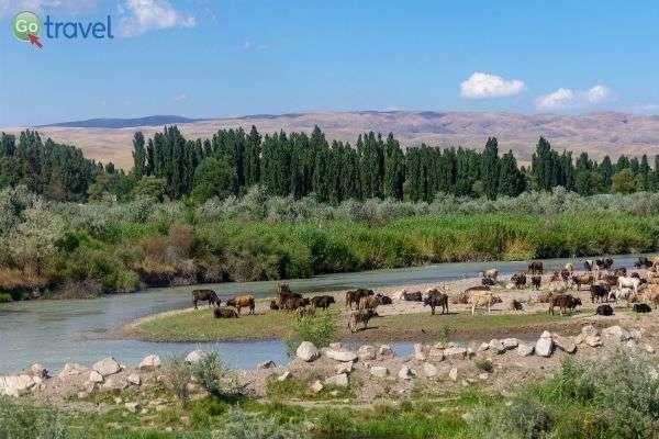 ערוץ נחל סמוך לעיר בישקק (צילום:  Ninara)
