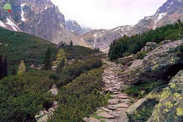 הרי הטטרה הגבוהים, מעל קו העצים (צילום: צחי גלובין)