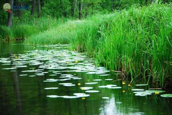 שייט על נהר קרוטיניה  (צילום: כרמית וייס)