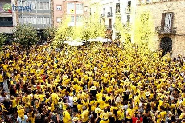 חגיגת הכנימות המובסות!  (צילום: Ajuntament Sant Sadurní)