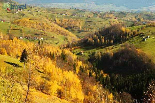 במורדות רכס פיאטרה קריולי - הרכס המלכותי, בשלכת של אוקטובר  (צילום: גלעד תלם)