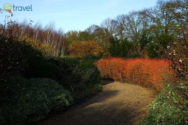 צבעי החורף היפהפיים מחמיאים לצמחייה הבריטית (צילום: Karen Roe)