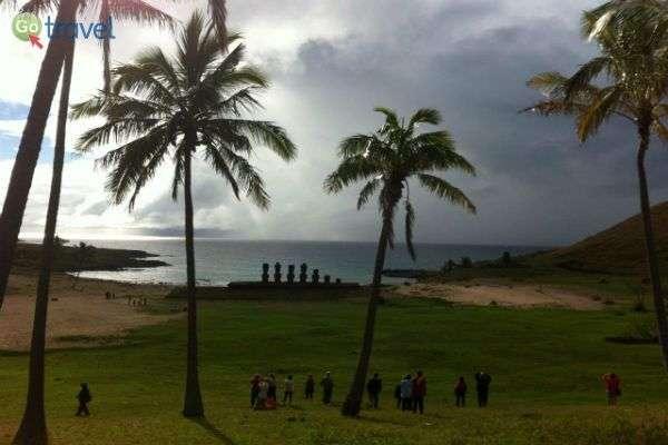 נופיו של האי, העצים נושקים לשמיים (צילום: רז שרבליס)