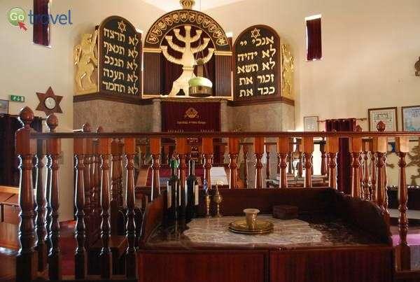 בית הכנסת של בלמונטה  (צילום: כרמית וייס)