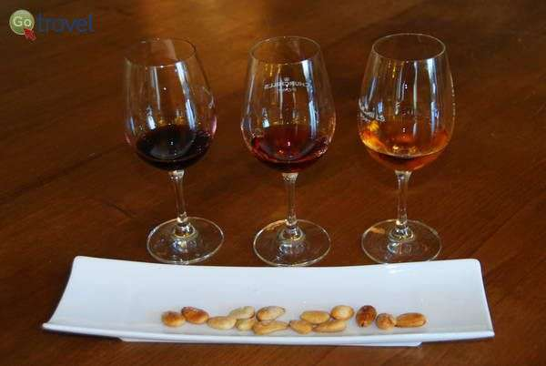 טעימות יין פורט משובח  (צילום: כרמית וייס)