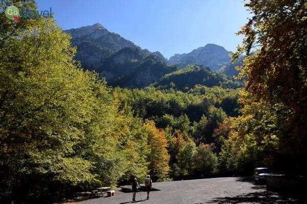צבעי הסתיו בשמורת קאמושרה  (צילום: הילה וייס טישלר)