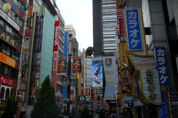 טוקיו הצבעונית - עיר מודרנית תוססת (צילום: איריס לוין)