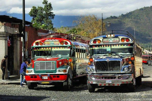 נסיעה חווייתית בצ'יקן באס במרכזים העירוניים (צילום: DEZALB)