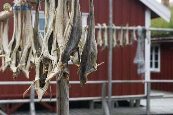דגים הם ענף הפרנסה העיקרי  (C.H. - Visitnorway.com)