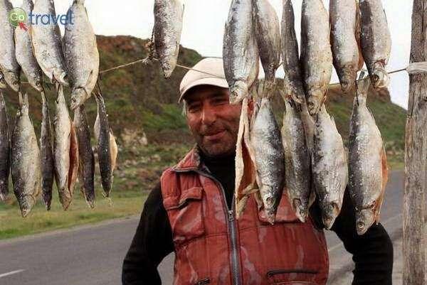 טעימות דגים מיובשים (צילום: עומר בריקמן)