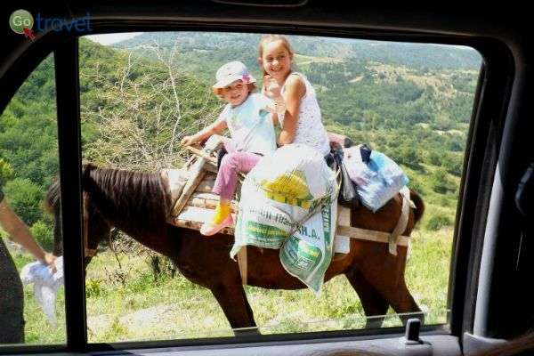 אפשר לטייל ברגל, בג'יפ וכמובן - רכובים על סוסים (צילום: חנה ערן)