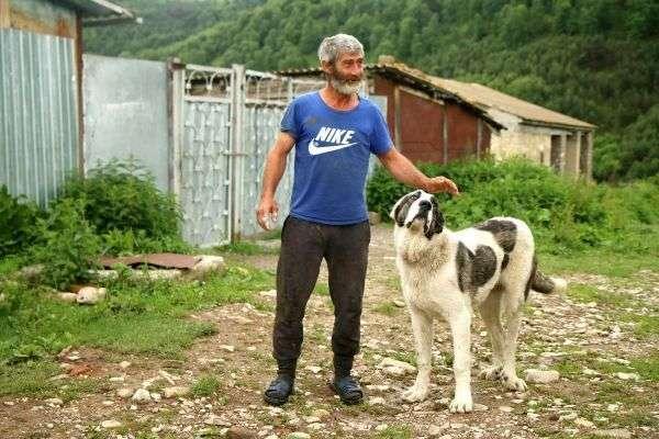 אנשים כמו בעלי החיים ידידותיים ביותר (צילום: גילי חסקין)