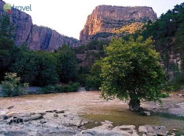 פריצת מעיינות נהר וידומטיקס (צילום: מדרפט)