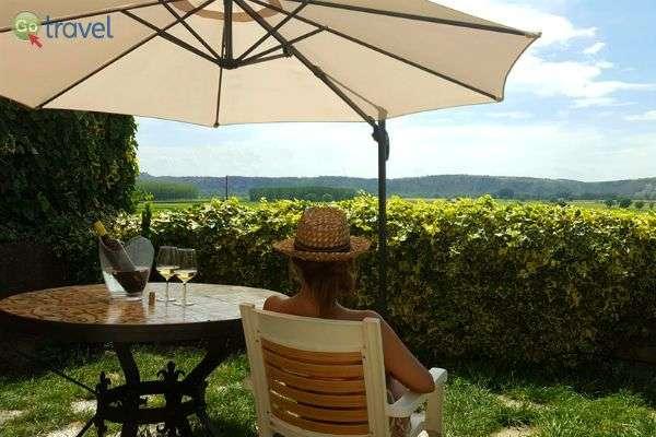 להישען אחורה וליהנות מהנוף, עם כוס יין מקומי ביד (צילום: פבלו קנלס)