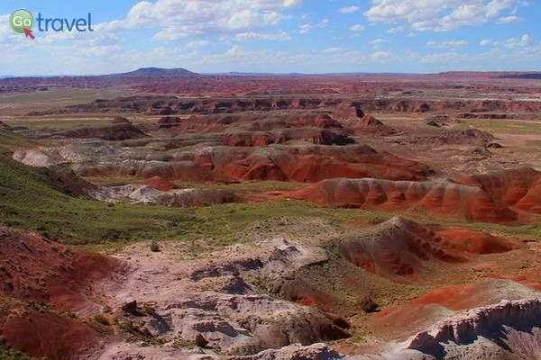 המדבר הצבוע  (צילום: David)