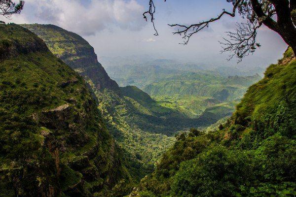 נוף שופע ירוק בהרי סימיאן (צילום: Thomas Maluck)