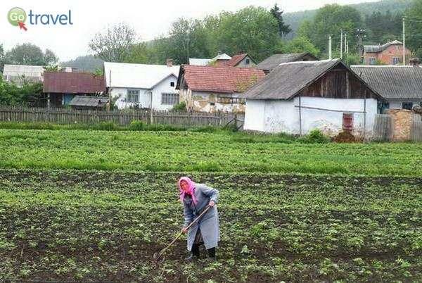 חלקות קטנות בכפרים בצד הדרך  (צילום: כרמית וייס)
