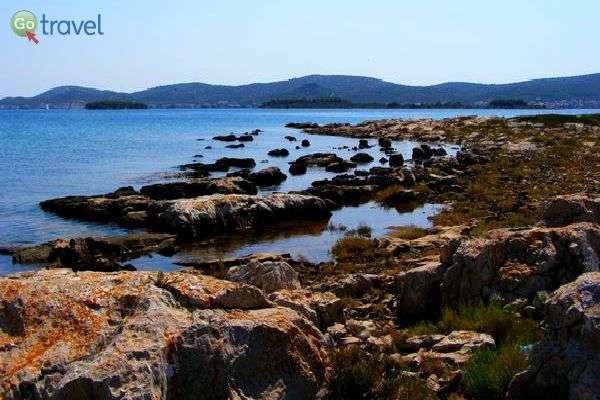 בין הסלעים, במים הרדודים, אפשר לבלות שעות בטיול ובתצפיות (צילום: אמיר גור)