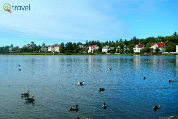 בוקר טוב עולם, יש ברווזים באגם (צילום: CC Sarah Ackerman)