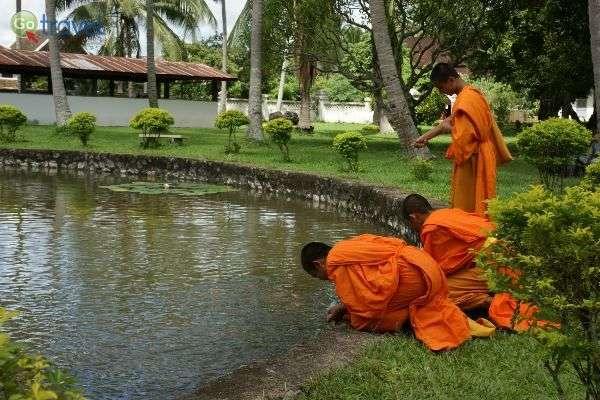 נזירים בודהיסטים הם מראה נפוץ בעיר לואנג פראבנג (צילום: Allie_Caulfield)