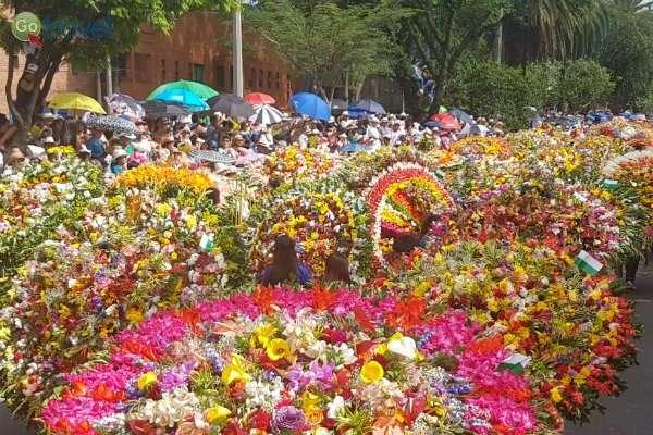 פסטיבל הפרחים, ניחשתם נכון (צילום: נעם סלע)
